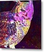 Owl Bird White Raptor  Metal Print
