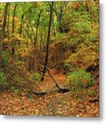 Owl Canyon In Autumn 2 Metal Print