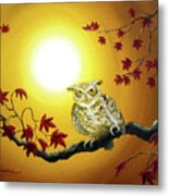 Owl In Autumn Glow Metal Print