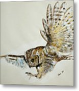 Owl In Flight Metal Print