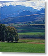 Owl Pass Uncompahgre National Forest Co Metal Print