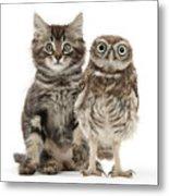 Owling And Yowling Metal Print