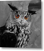 Owls Eye Metal Print