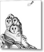 Owls In A Shoe Metal Print
