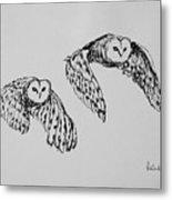 Owls In Flight Metal Print