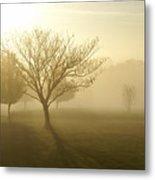 Ozarks Misty Golden Morning Sunrise Metal Print