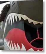 P-40 Warhawk - 2 Metal Print