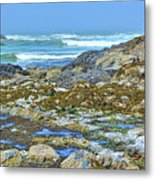 Pacific Coast Tide Pools Metal Print