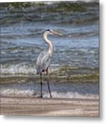 Padre Island National Seashore  Metal Print