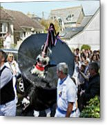 Padstow Blue Oss And Supporters Metal Print