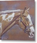 Paint Horse Metal Print by Dorothy Coatsworth
