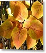 Painted Autumn Lilac Metal Print