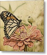 Painted Beauty Metal Print