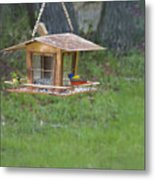 Painted Buntings Metal Print