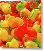 Painted Chilies Metal Print