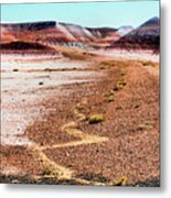 Painted Desert 0319 Metal Print