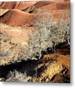 Painted Desert 7 Metal Print