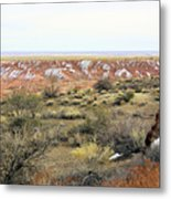 Painted Desert Winter 0571 Metal Print