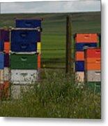 Painted Hives Metal Print