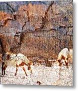 Painted Horses Metal Print