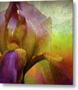 Painted Iris Metal Print