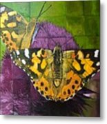 Painted Lady Butterflies Metal Print