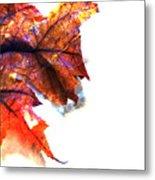 Painted Leaf Series 1 Metal Print