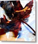 Painted Leaf Series 2 Metal Print