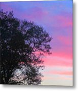 Painted Pink Sky Metal Print