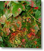 Painted Plants Metal Print