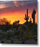Painted Skies Of The Sonoran Desert Metal Print