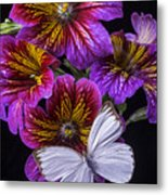 Painted Tongue With White Butterfly Metal Print