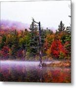 Painted Trees Metal Print