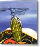 Painted Turtle And Dragonfly Metal Print