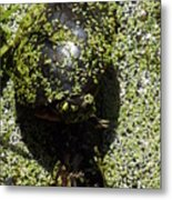 Painted Turtle Camouflague Metal Print