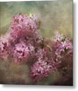 Painterly Lilac Blossom Photograph Metal Print