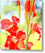 Painter's Delight Metal Print