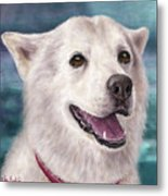 Painting Of A White And Furry Alaskan Malamute Metal Print