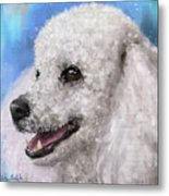 Painting Of A White Fluffy Poodle Smiling Metal Print
