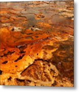 Painting Of Nature Metal Print