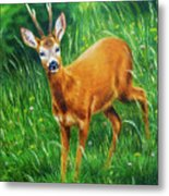 painting of young deer in wild landscape with high grass. Eye contact. Metal Print