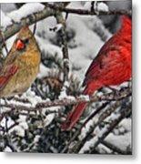 Pair Of Cardinals In Winter Metal Print