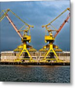 Pair Of Cranes Metal Print
