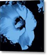 Pale Blue Tinge Hibiscus Flower Metal Print