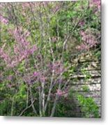 Pale Pink Spring Metal Print