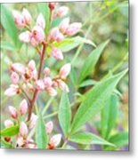 Pale Powder Pink Plant Metal Print