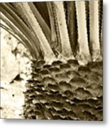 Palm Abstraction Metal Print