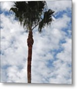 Palm And Clouds Metal Print