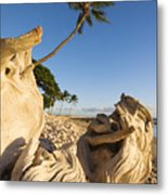Palm And Driftwood Metal Print