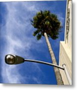 Palm And Streetlight Metal Print